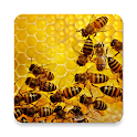Apiary Book icon