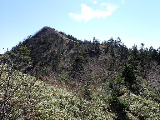 前方に山頂のピークが