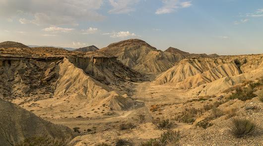 El oasis del Desierto, un lugar único por descubrir