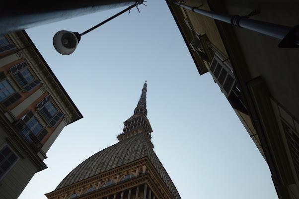 """voglio una """"Mole """" di attenzione di Alessandra Botticelli"""