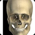 Visual Bones icon
