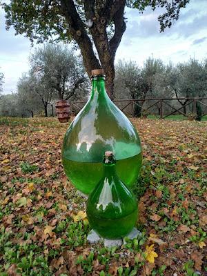 Damigiane in bellavista. di claudio_sposetti