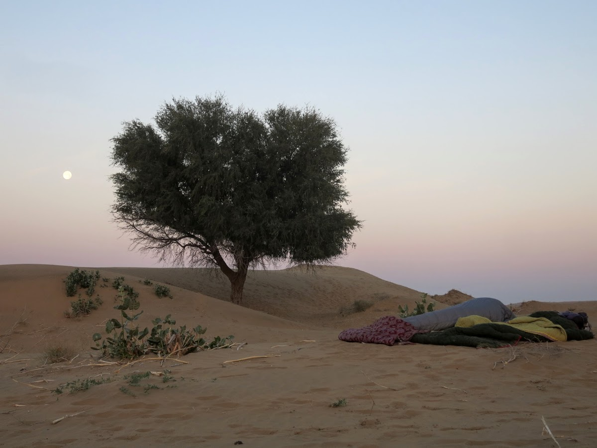 India. Rajasthan Thar Desert Camel Trek. Sleeping under the full moon