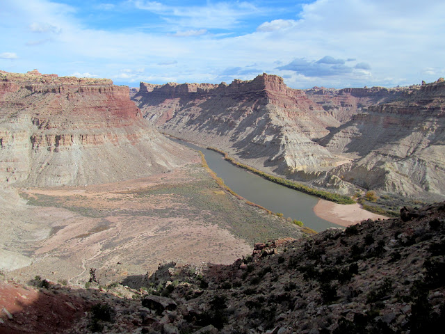 Colorado River and Spanish Bottom