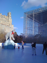 Photo: Green Ice Skating - Hayden Planitarium