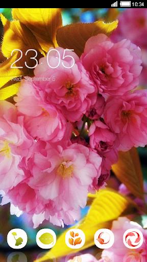 Summer Love Flowers CLauncher