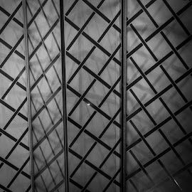 Pattern #4 by Rebecca Pollard - Abstract Patterns