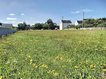terrain à Plozévet (29)