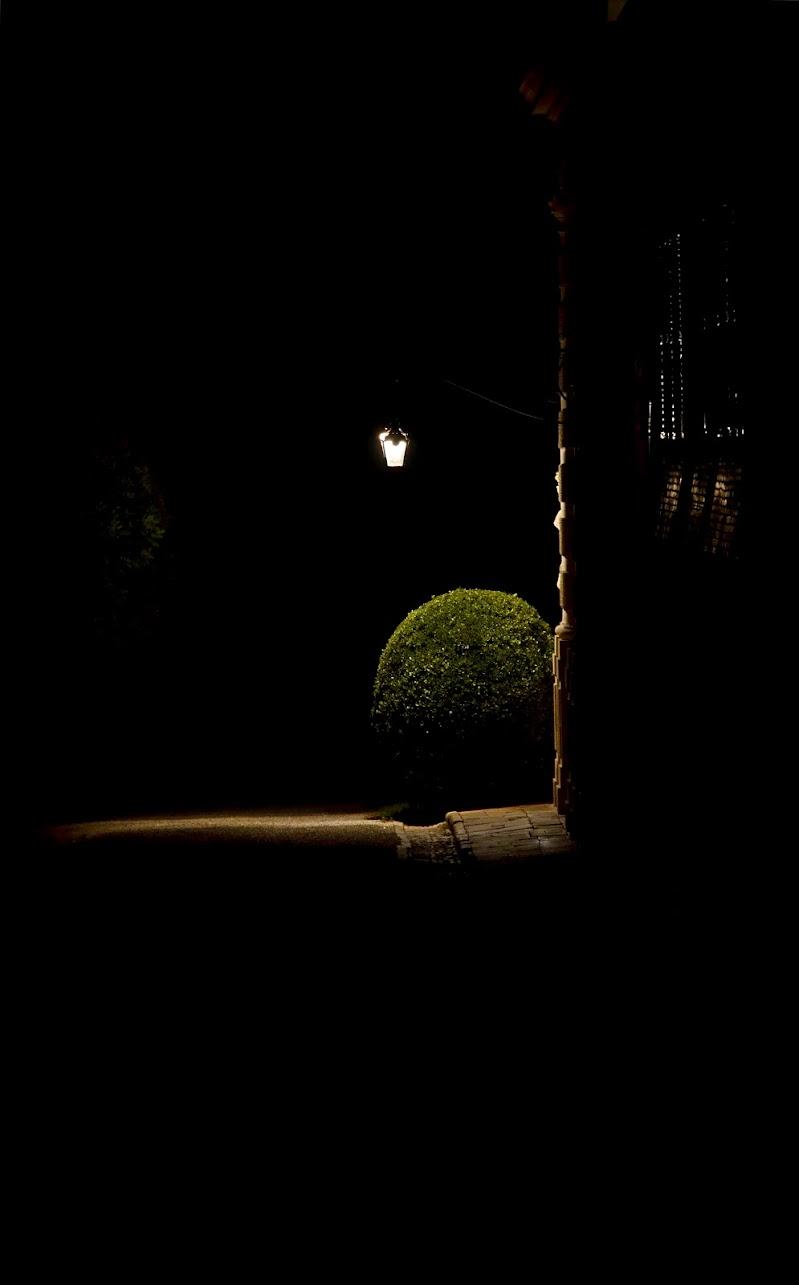 Una luce nel buio.. di vb63