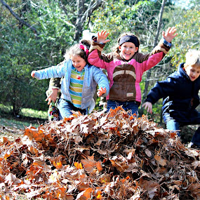 Kids  and leaves.. Need I say more.. ha ha by Jessica Driver - Babies & Children Children Candids