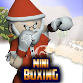 Mini Boxing