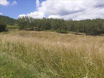terrain à Nonards (19)