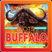 Slots Buffalo Slots