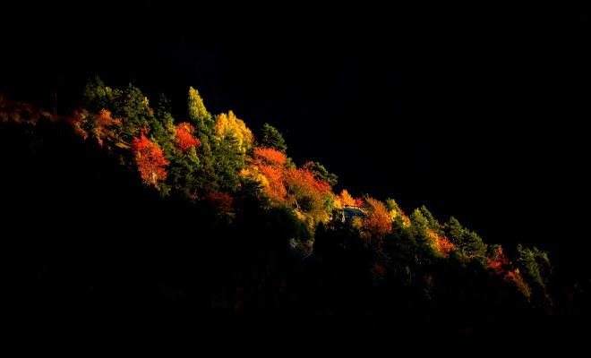 Il susseguirsi delle stagioni. di gigidueelle