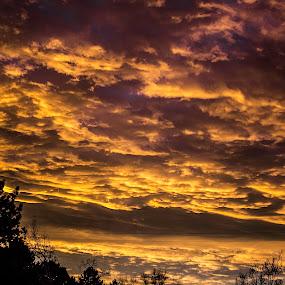 Marble Sky by Jason Murray - Landscapes Sunsets & Sunrises ( marble, sky, sunset, beautiful, beauty, sunrise, golden, sun, skyscape,  )