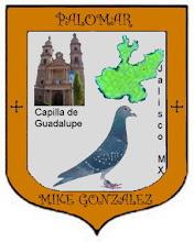 Photo: Escudo de mi palomar hecho y obsequiado por mi amigo el  Ing. Gerardo Romo Gutierrez de la Cd. de Lagos de Moreno Jal.