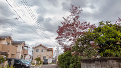 Photo: Big blossoming tree dramatically silhouetted against a dark spring sky, in Ōizumi, Ōra District, Gunma Prefecture. Read more about Oizumi: http://japanvisitor.blogspot.jp/2015/04/oizumibrazil-in-japan.html