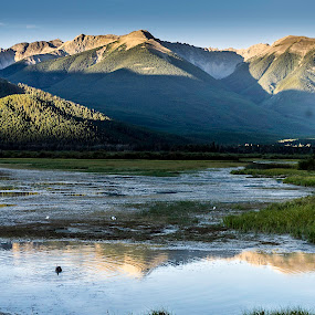Vermilion Lakes  Early Morning by Frank Barnitz - Landscapes Waterscapes ( national park, mountains, canadian rockies, horizontal, reflections, trees, lake, banff, early morning, golden hour )
