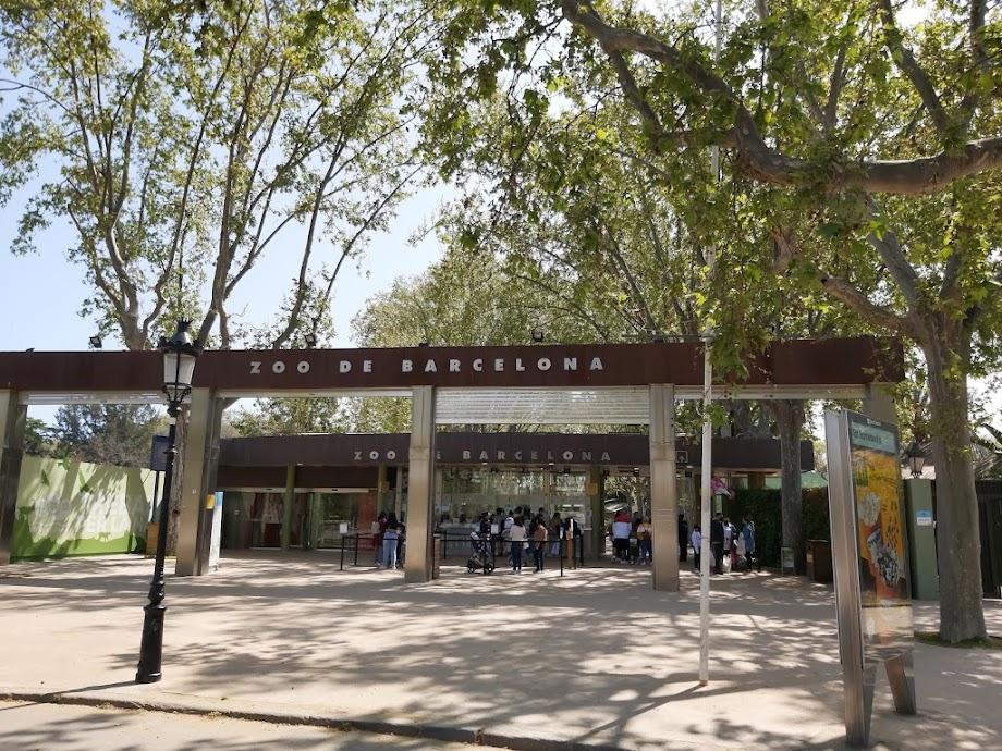 Foto Zoo Barcelona 11