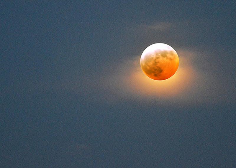 Sweet moon di rafiki