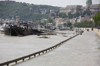 Photo: Day 72 - Debris in the Danube in Budapest