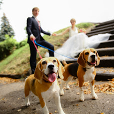 Wedding photographer Andrey Voronov (Bora21). Photo of 13.02.2016