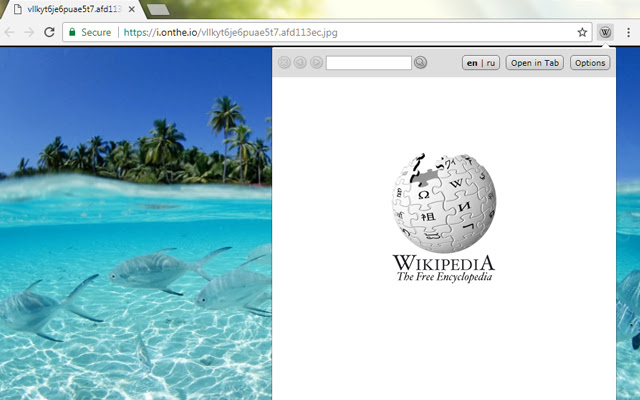 Lookup Companion for Wikipedia(Fixed version)