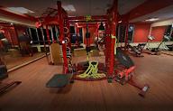Muscledog Fitness photo 3