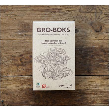 Odlingsbox - ostronskivling odlat i kaffesump