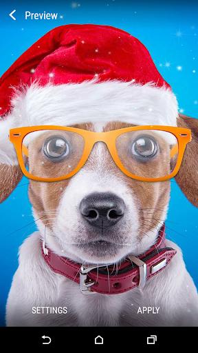 玩個人化App|聖誕狗動態壁紙免費|APP試玩