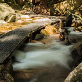 The Walkway by Deborah Bisley - Landscapes Waterscapes ( water, stream, path, walkway, bridge, jourama falls, rocks, river,  )
