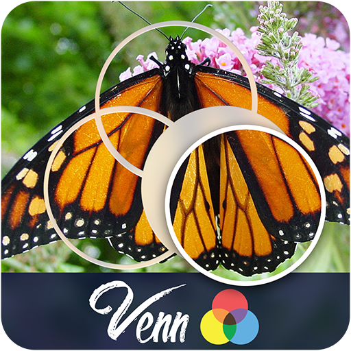 Venn Butterflies Circle Jigsaw