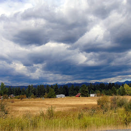 STORM SKY by Cynthia Dodd - Novices Only Landscapes ( clouds, mountain, sky, nature, colorful, colors, green, outdoors, trees, landscapes, storm, fields )