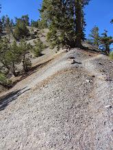 Photo: North Backbone Trail