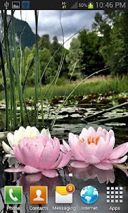 Nature Lotus Flower LWP screenshot 2