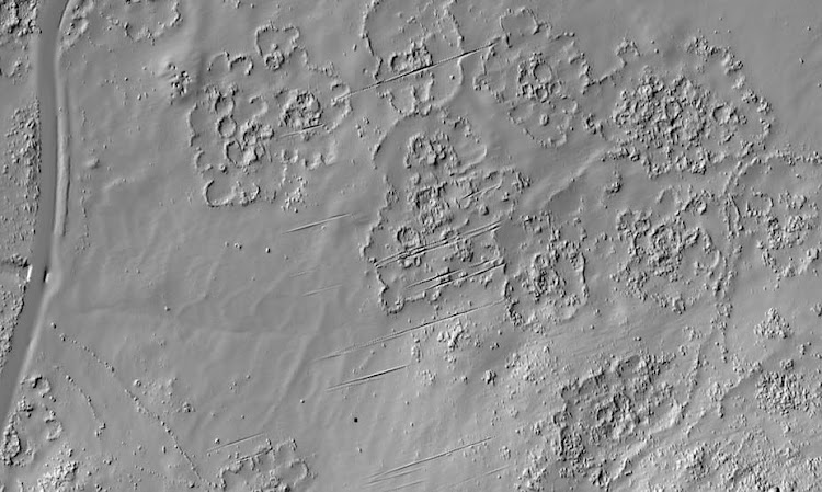 LiDAR, was used to 'redraw' the remains of the city, along the lower western slopes of the Suikerbosrand hills near Johannesburg. Picture: KARIM SADR