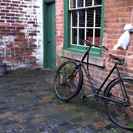 back yard by Sue Rickhuss - Transportation Bicycles (  )