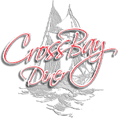 Cross Bay Diner