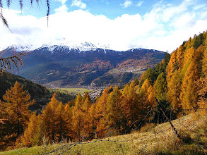 Photo: Panorama autunnale dalla Valfurva [ph. Lela SANTELLI - thanks!]