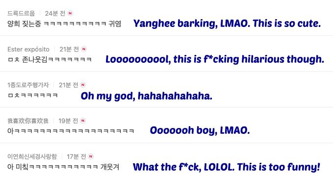 komentar sunghoon