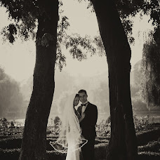 Wedding photographer Dalina Andrei (Dalina). Photo of 10.11.2017
