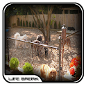 Dog Home Fence Design icon