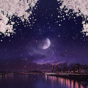[임샤인] 밤 벚꽃 축제 카카오톡 테마 (night view cherry blossom) icon