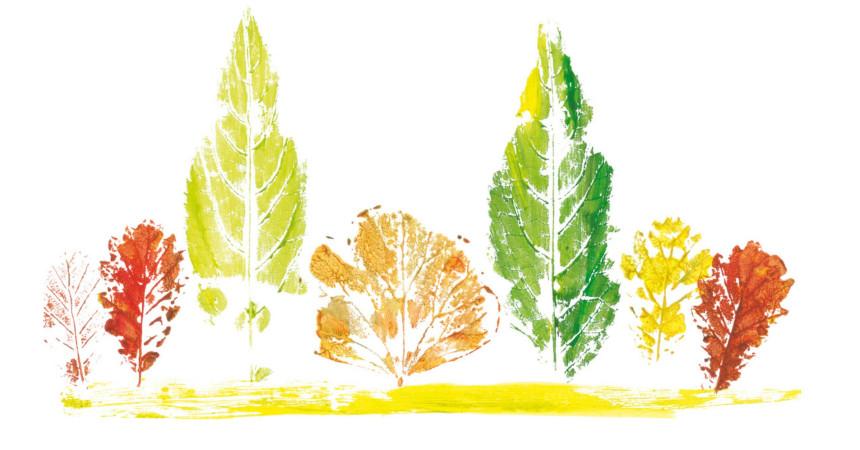 educacion-docente-6-decoraciones-de-verano-con-materiales-reciclados-cuadros-con-hojas-y-flores