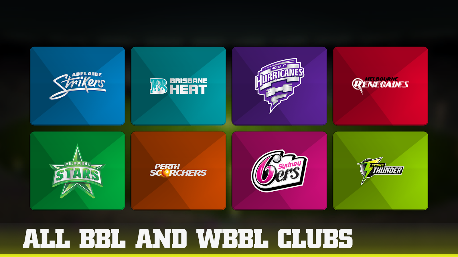 Big Bash 2016- screenshot