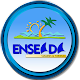 Enseada Download on Windows