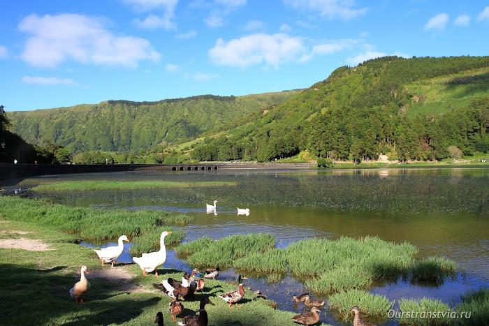 Озера Verde и Azul на острове Сан Мигель, Португалия
