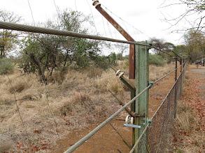 Photo: Kruger National Park. Shingwedzi