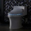 Bidet Toilet icon