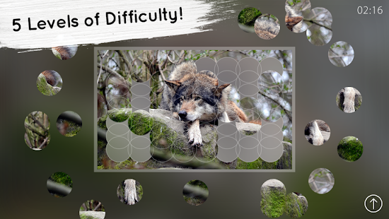 Venn Wolves: Circle Jigsaw- screenshot thumbnail